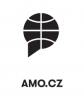 """logo """"Asociace pro mezinárodní otázky, z. s."""""""