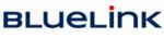 logo Bluelink International CZ